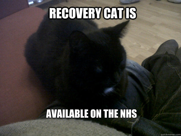 Recovery Cat is available on the NHS - Recovery Cat is available on the NHS  recovery cat