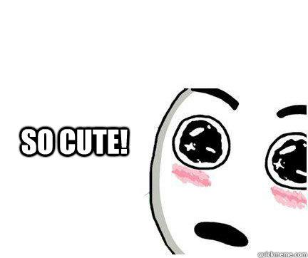 so cute meme face 28 images sooo pretty aww meme quickmeme so
