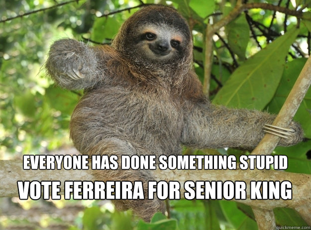 everyone has done something stupid vote ferreira for senior king - everyone has done something stupid vote ferreira for senior king  Sloth menthols