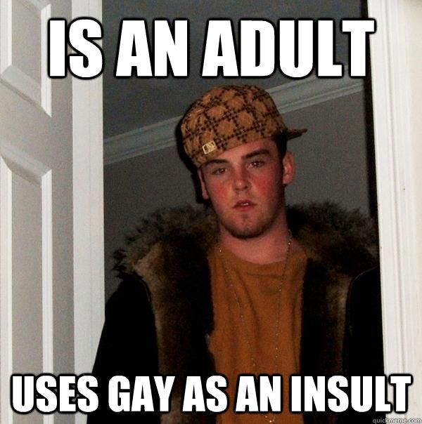 funny gay insult