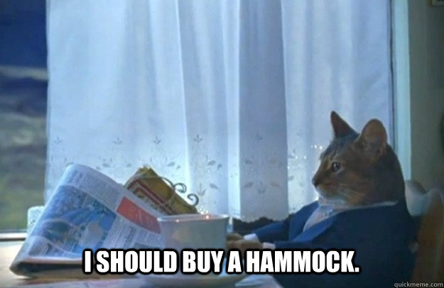 I SHOULD BUY A HAMMOCK. - I SHOULD BUY A HAMMOCK.  Sophisticated Cat