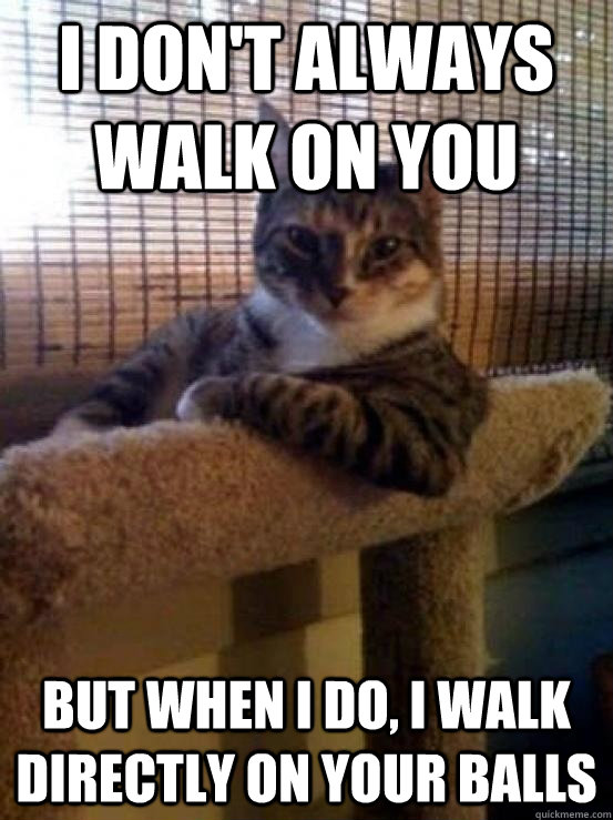 I don't always walk on you But when I do, I walk directly on your balls - I don't always walk on you But when I do, I walk directly on your balls  Misc