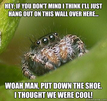 hey, if you don't mind I think i'll just hang out on this wall over here... woah man, put down the shoe. I thought we were cool! - hey, if you don't mind I think i'll just hang out on this wall over here... woah man, put down the shoe. I thought we were cool!  Misunderstood Spider