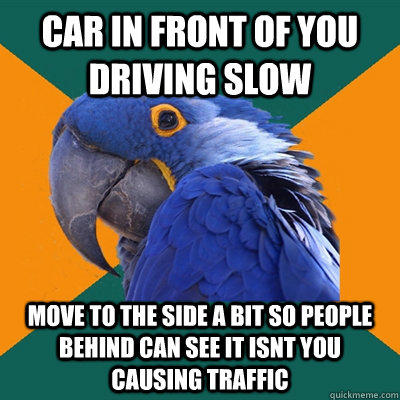 car in front of you driving slow move to the side a bit so people behind can see it isnt you causing traffic - car in front of you driving slow move to the side a bit so people behind can see it isnt you causing traffic  Paranoid Parrot