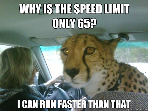 Why is the speed limit only 65? I can run faster than that