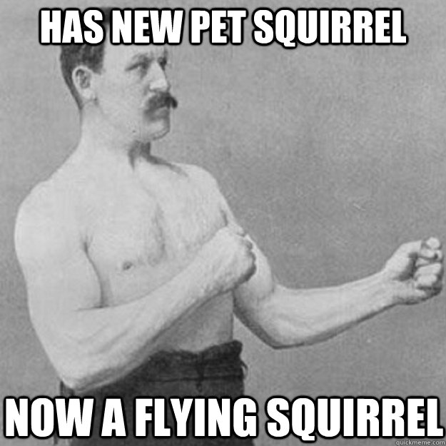 Has new pet squirrel Now a flying squirrel - Has new pet squirrel Now a flying squirrel  overly manly man