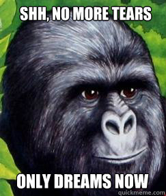 Shh, no more tears Only dreams now  gorilla munch