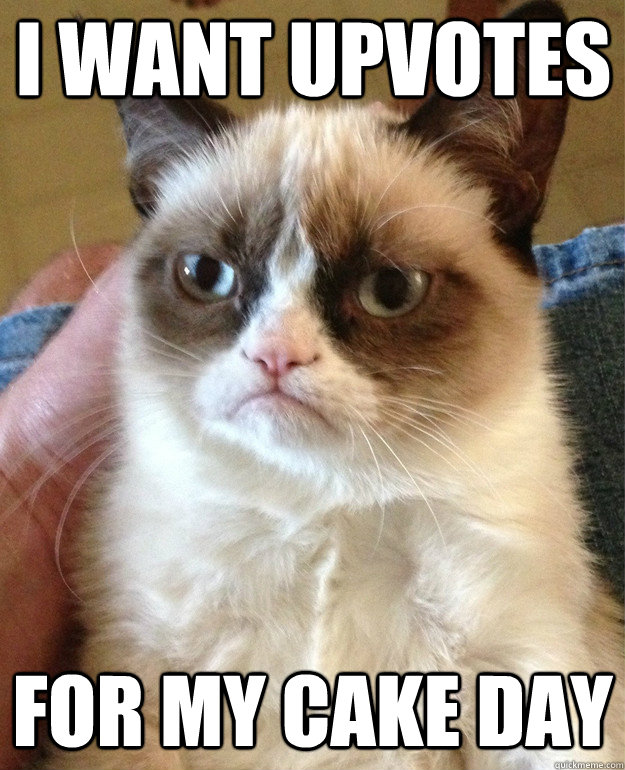 i want upvotes for my cake day  Grumpy Cat
