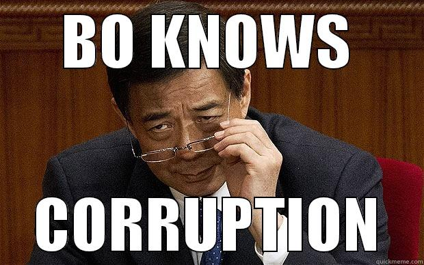 Bo Knows Bo