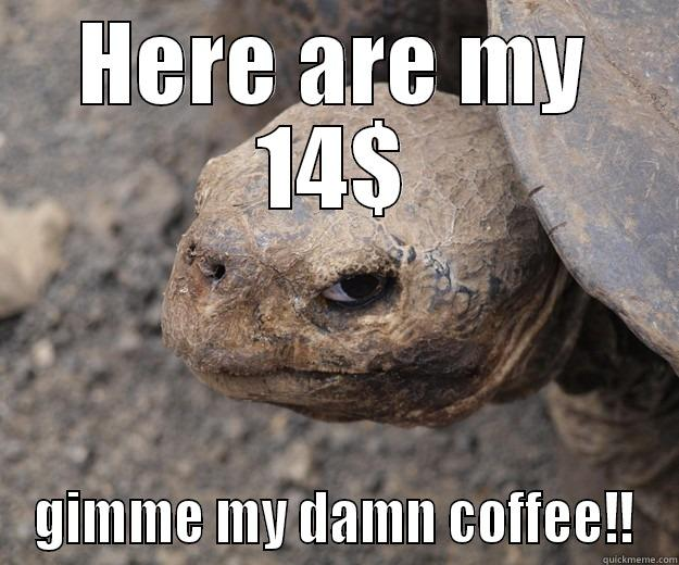 HERE ARE MY 14$ GIMME MY DAMN COFFEE!! Angry Turtle