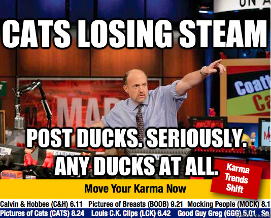 Cats losing steam Post ducks. Seriously. Any ducks at all. - Cats losing steam Post ducks. Seriously. Any ducks at all.  Mad Karma with Jim Cramer