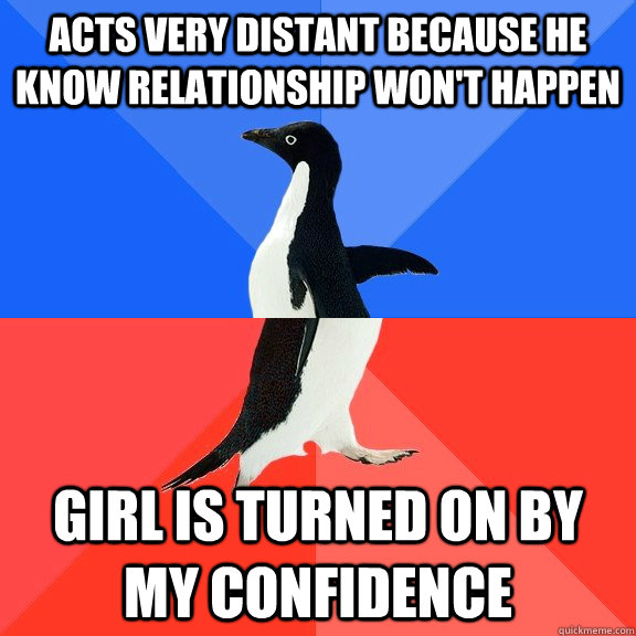acts very distant because he know relationship won't happen girl is turned on by my confidence - acts very distant because he know relationship won't happen girl is turned on by my confidence  Socially Awkward Awesome Penguin