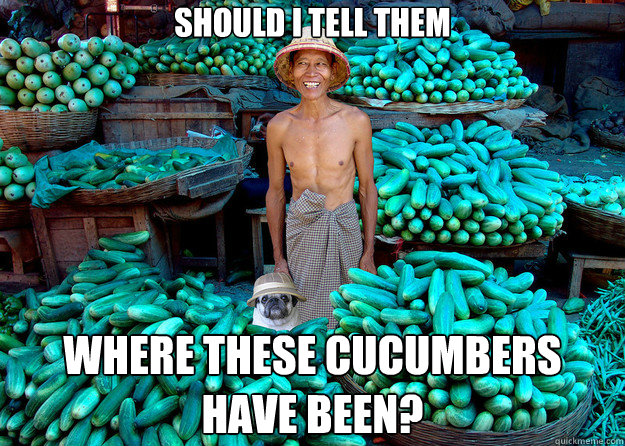 Should I tell them Where these cucumbers have been? - Should I tell them Where these cucumbers have been?  Misc