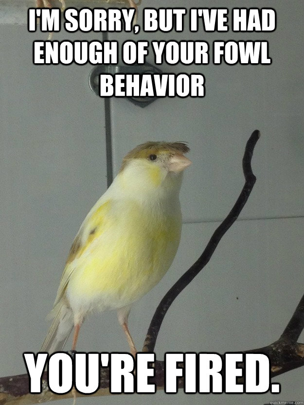 i m sorry but i ve had enough of your fowl behavior you