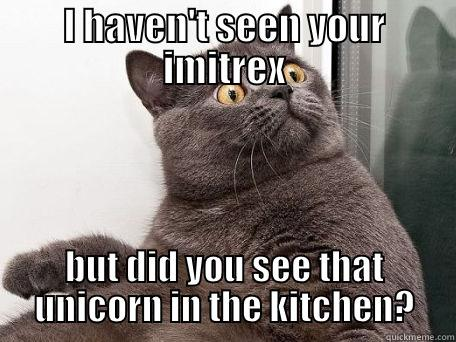 I HAVEN'T SEEN YOUR IMITREX BUT DID YOU SEE THAT UNICORN IN THE KITCHEN? conspiracy cat