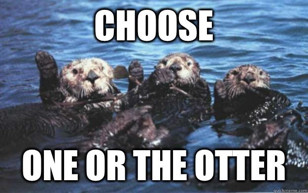 Choose one or the otter