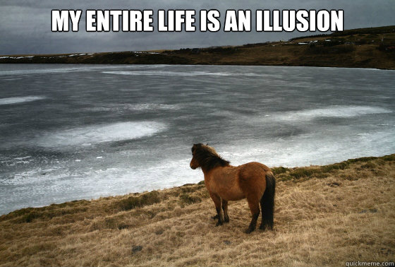 My entire life is an illusion   - My entire life is an illusion    Self-Reflection Pony