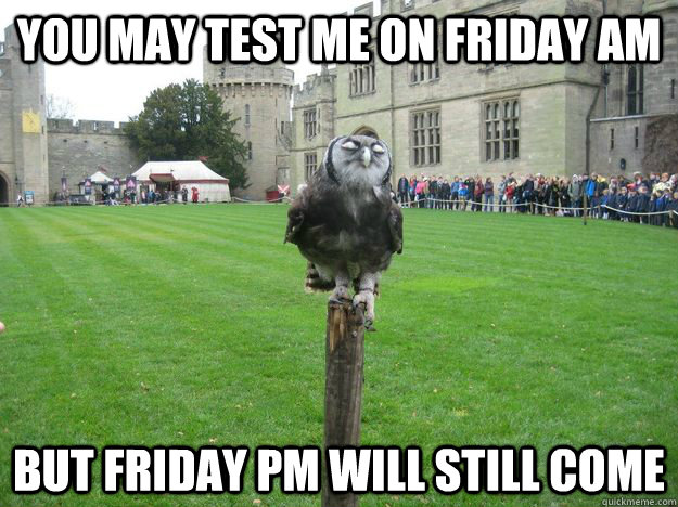 You may test me on Friday AM But Friday PM will still come - You may test me on Friday AM But Friday PM will still come  Pompous Owl