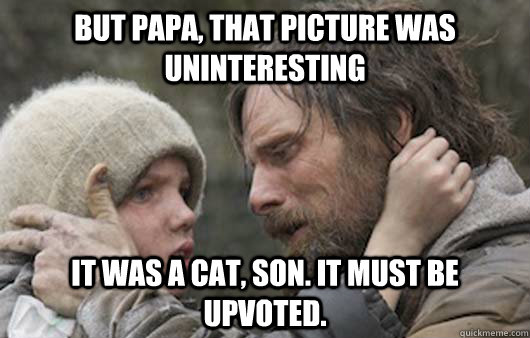 But papa, that picture was uninteresting It was a cat, son. It must be upvoted.