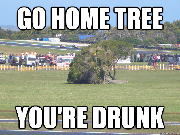 Go home Tree You're drunk - Go home Tree You're drunk  Misc