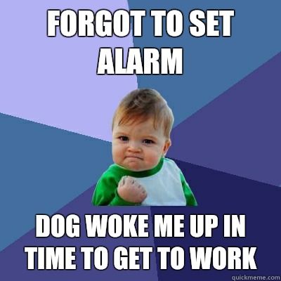 Forgot to set alarm Dog Woke me up in  time to get to work - Forgot to set alarm Dog Woke me up in  time to get to work  Success Kid
