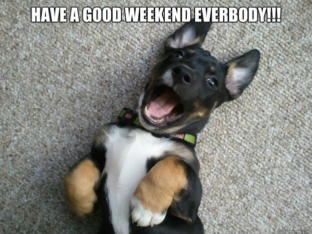 Have a good weekend everbody!!! - Have a good weekend everbody!!!  Happy Puppy