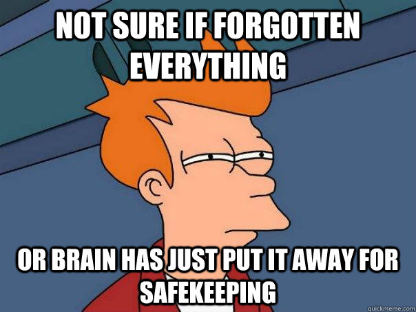 Not sure if forgotten everything Or brain has just put it away for safekeeping - Not sure if forgotten everything Or brain has just put it away for safekeeping  Futurama Fry