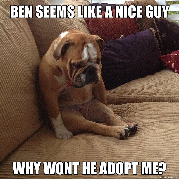 f779f977fe97006cec700059f3efc3649f8f07139e7aea268db8482e67cc3b34 depressed dog memes quickmeme,Meme Depressed Guy