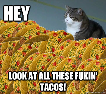 hey           look at all these fukin' tacos!