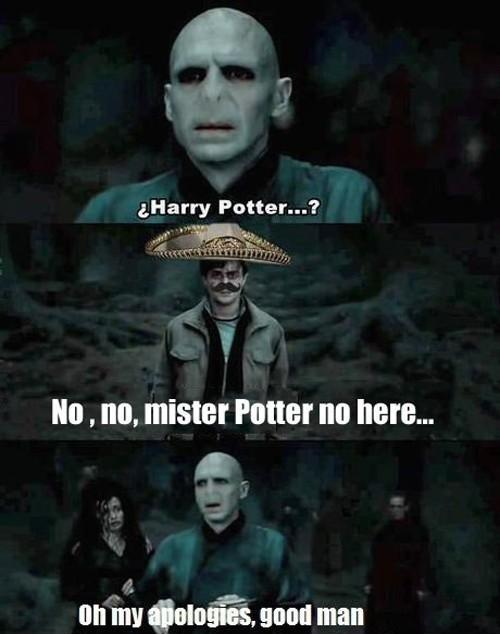 No,no, mister Potter no here...