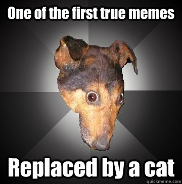 One of the first true memes Replaced by a cat - One of the first true memes Replaced by a cat  Depression Dog