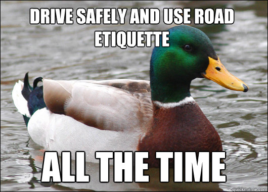 drive safely and use road etiquette All the time - drive safely and use road etiquette All the time  Actual Advice Mallard