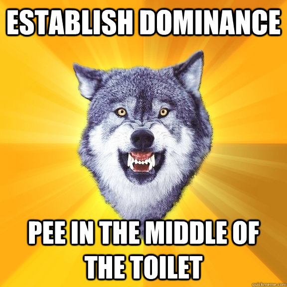 establish dominance pee in the middle of the toilet - establish dominance pee in the middle of the toilet  Courage Wolf