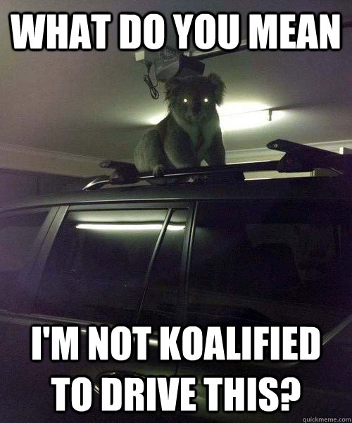 What do you mean I'm not koalified to drive this?