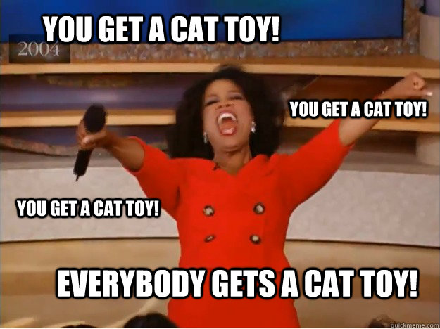 you get a cat toy! everybody gets a cat toy! you get a cat toy! you get a cat toy! - you get a cat toy! everybody gets a cat toy! you get a cat toy! you get a cat toy!  oprah you get a car