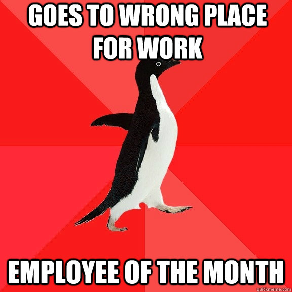 Goes to wrong place for work Employee of the month - Goes to wrong place for work Employee of the month  Socially Awesome Penguin