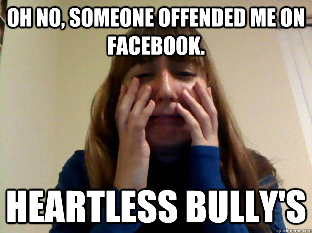 oh no, someone offended me on facebook. heartless bully's