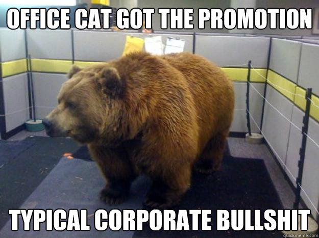 Office Cat Got The Promotion Typical Corporate Bullshit Office
