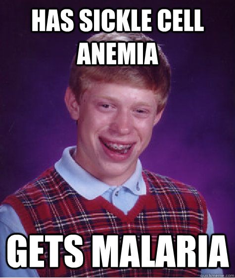 has sickle cell anemia gets malaria - has sickle cell anemia gets malaria  Bad Luck Brian
