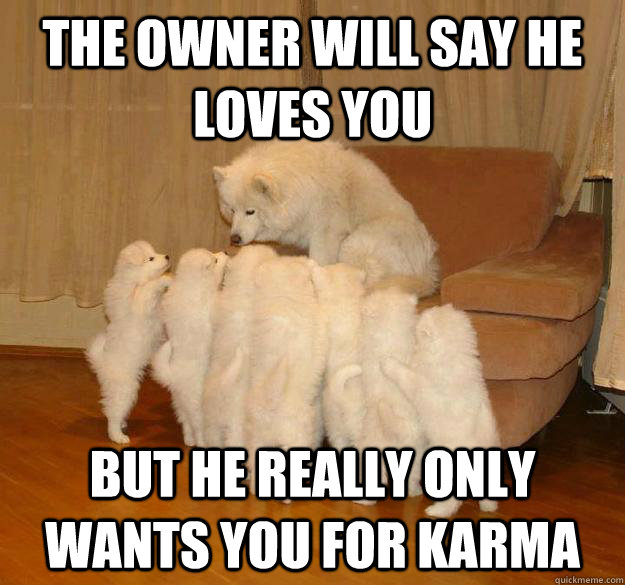 the owner will say he loves you but he really only wants you for karma - the owner will say he loves you but he really only wants you for karma  Misc