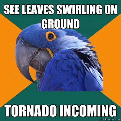 See leaves swirling on ground Tornado incoming - See leaves swirling on ground Tornado incoming  Paranoid Parrot