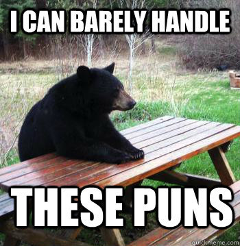 I can barely handle These Puns - I can barely handle These Puns  Bear  Picnic Table