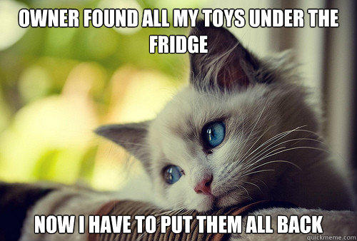 Owner found all my toys under the fridge now I have to put them all back - Owner found all my toys under the fridge now I have to put them all back  First World Cat Problems