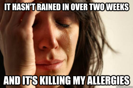 It hasn't rained in over two weeks And it's killing my allergies - It hasn't rained in over two weeks And it's killing my allergies  First World Problems
