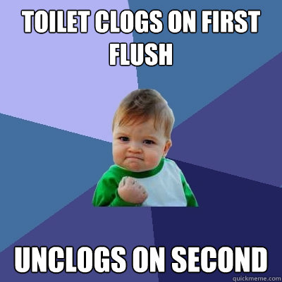 Toilet clogs on first flush unclogs on second - Toilet clogs on first flush unclogs on second  Success Kid