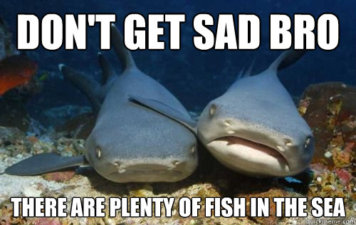 Don 39 t get sad bro there are plenty of fish in the sea for Plenty of fish in the sea meme