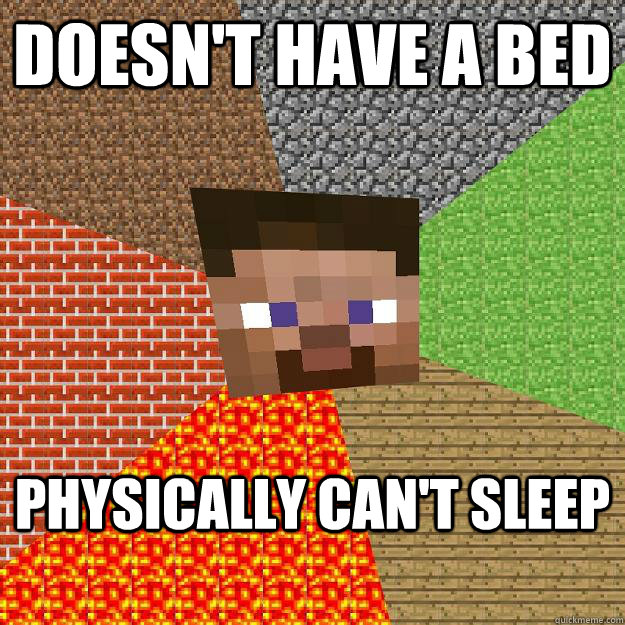 doesn't have a bed physically can't sleep - doesn't have a bed physically can't sleep  Minecraft