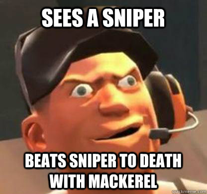 Sees a sniper beats sniper to death with mackerel  Derpy Scout