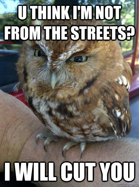u think I'm not from the streets? I will cut you  Outrageous owl