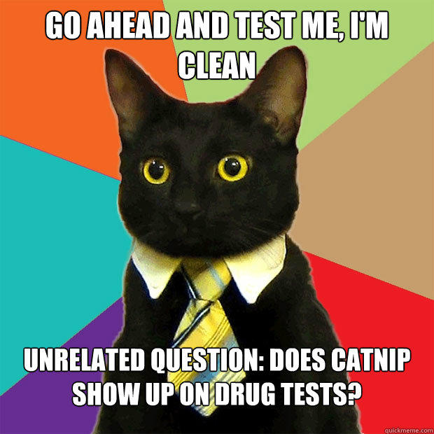Go ahead and test me, I'm clean Unrelated question: does catnip show up on drug tests? - Go ahead and test me, I'm clean Unrelated question: does catnip show up on drug tests?  Business Cat